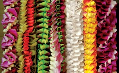 may-day-is-lei-day